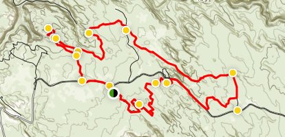 Fins & Things Trail Map