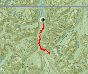 Waterton Valley Trail Map