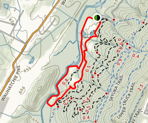 Lookout Creek Trail Map