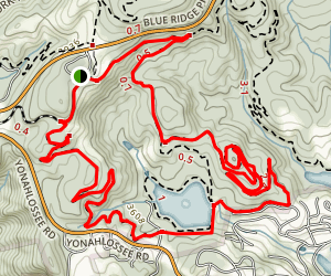 Cone Manor to Bass Lake Trail Map