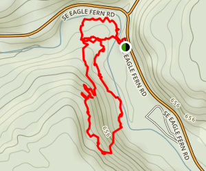 Eagle-Fern County Park Loop Trail Map