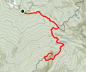 Mont Echo Trail Map