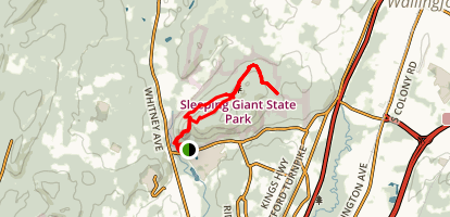 Sleeping Giant Head Blue and Violet Loop Trail Map
