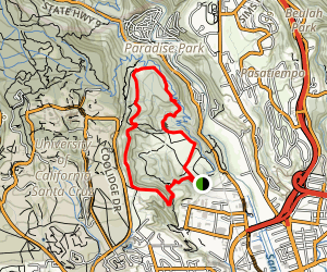 Fern Trail, Spring Trail and Lookout Trail Loop Map