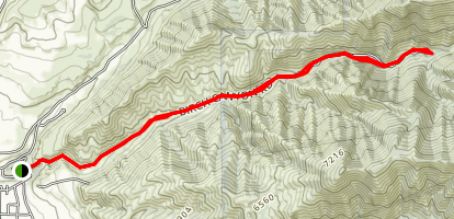 Birch Canyon Road Trail Map