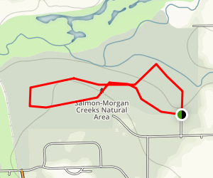 Salmon-Morgan Creeks Trail Map