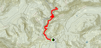Barker Pass to Twin Peaks Map