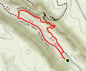 Main Ruin Loop Trail Map