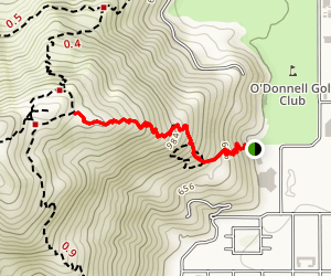 Museum Trail Map