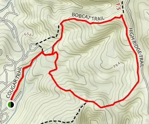 Cougar Trail Loop Map