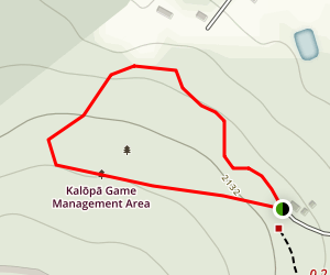 Kalopa Native Forest Trail Map