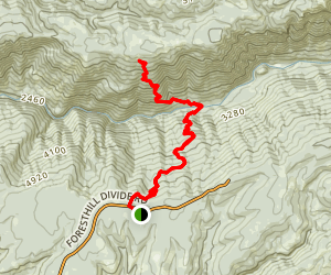 Mumford Bar Trail Map