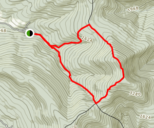 Balsam Mountain from Rider Hollow Rd Map