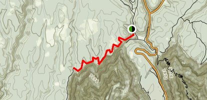 Widforss Trail - Short Option Map