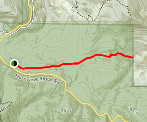 Heart O' the Forest Trail Map