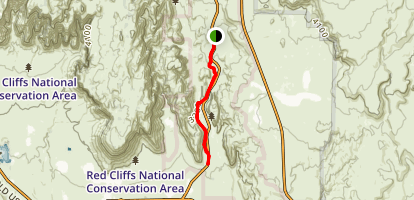 Whiptail Trail Map
