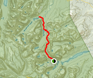 Ptarmigan Trail to Cosley Lake Map