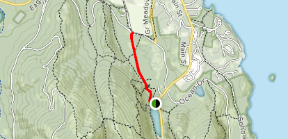 Jesup Trail Map