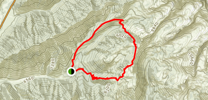 Long Gulch to Pioneer Cabin Loop Map