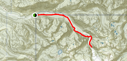 Carbon Glacier Trail Map