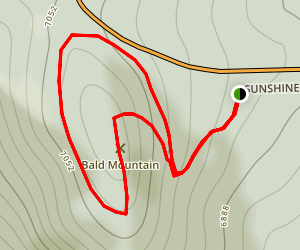 Pines to Peak - Bald Mountain Loop Trail Map