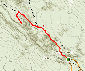Navajo Arch Trail Map