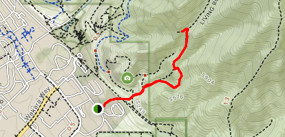 The Living Room Lookout Trail Map