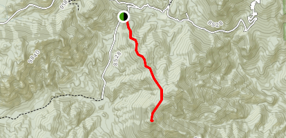 Gray Back Peak Trail Map