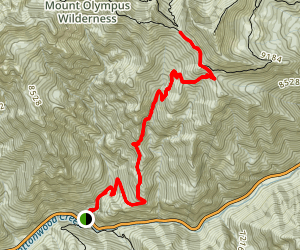Mount Raymond Via Mill B North Map