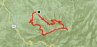 Mount LeConte and Rainbow Falls via The Bullhead Trail Map