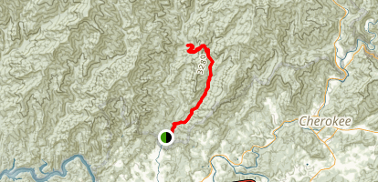 Indian Creek to Martin's Gap Trail Map