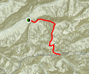 Graves Creek Trail Map