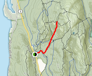 Maple Spring Trail Map