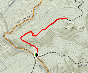 Calf Mountain Trail Map