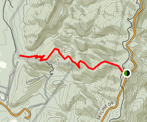 Wildcat Ridge Trail Map