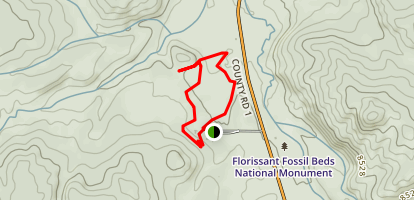 Petrified Forest Loop and Ponderosa Loop Trails Map