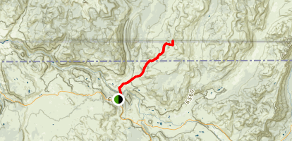 Buffalo Plateau Trail Map