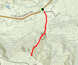 Petrified Forest Trail Map