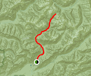 North Fork Quinault Trail Map