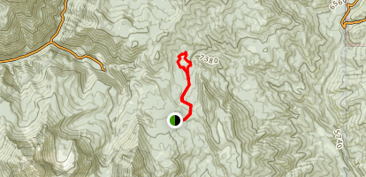 Alpine Summit to Elk Camp Map