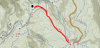 Trail 159  Map