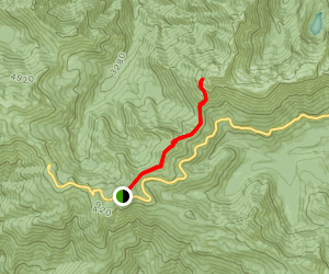 Sunrise Ridge Trail to Mount Angeles Map
