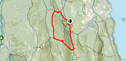 Dorr Mountain North Ridge Trail to Ladder Trail Map