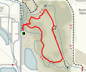 Wilcox Trail Map
