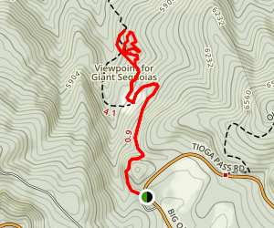Tuolumne Grove Trail Map