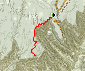 Widforss Trail Map