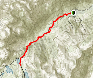Lundy Canyon Trail Map