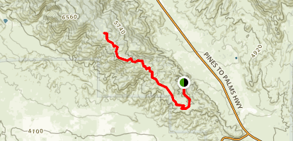 Thomas Mountain Trail Map