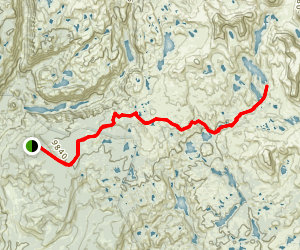 Cook Lake Trail Map