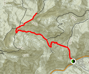 Butler Fork to Gobblers Knob Trail Map